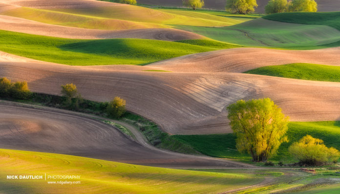 Palouse hills with dodge and burn technique