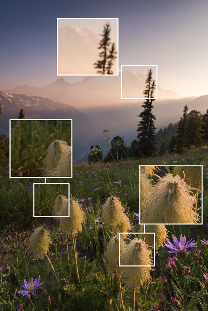Guide to Focus Stacking