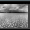 Black and White Photo Processing: Lightroom Course