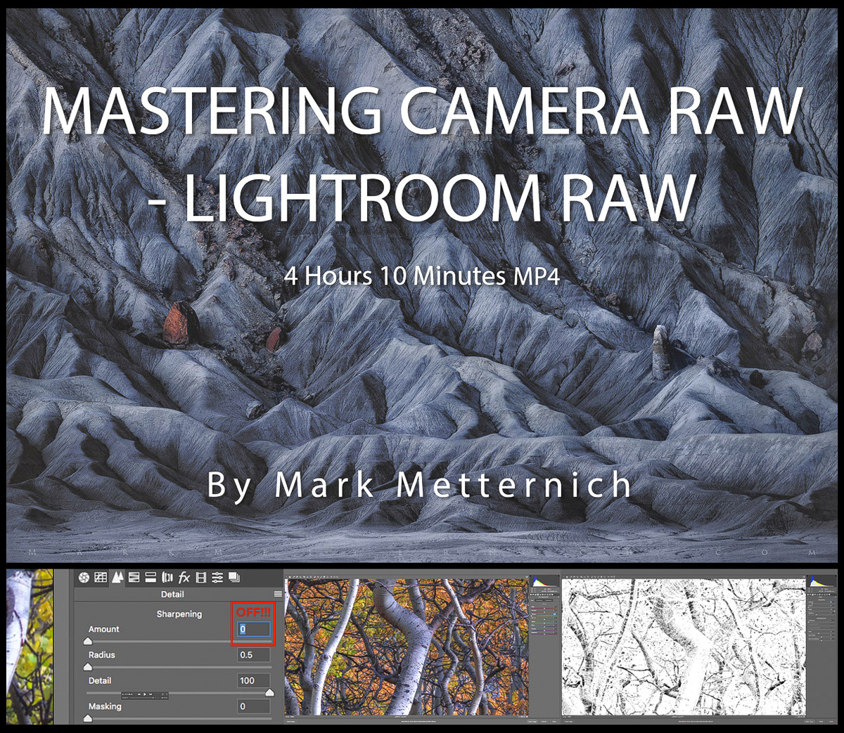 Mastering Camera Raw and Lightroom Raw
