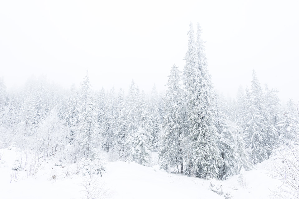 Extend Battery Life Winter Photography