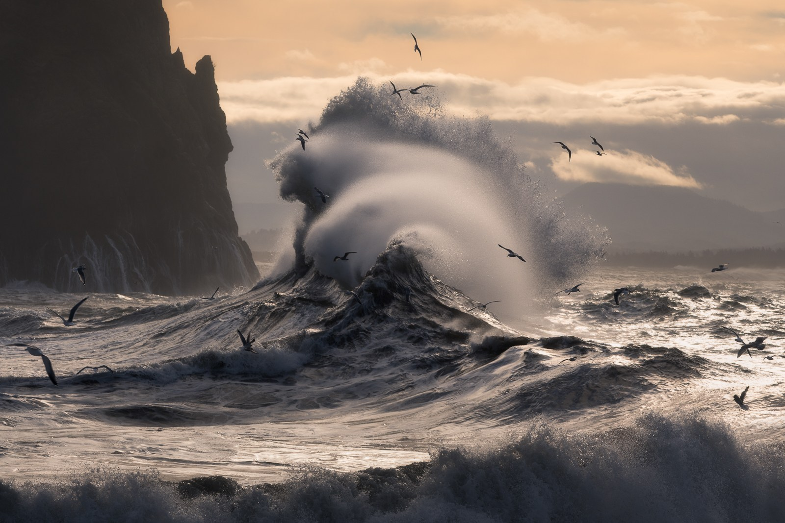 Majeed Badizadegan Interview