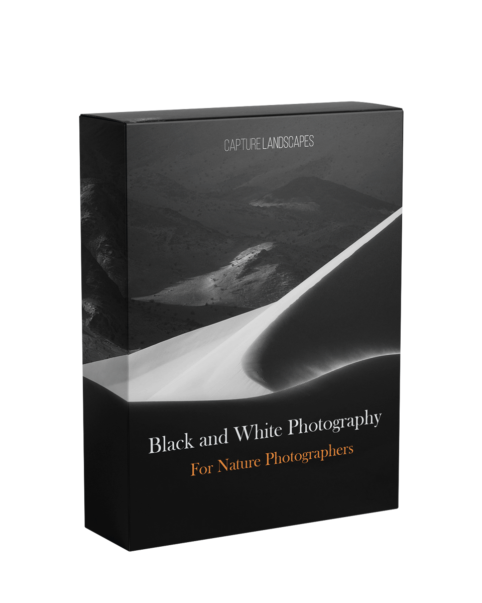 Black & White Photography Course