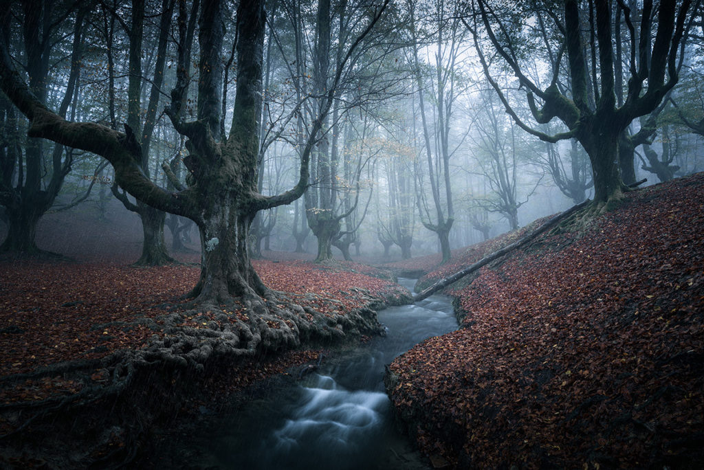 Introductions to the Fundamentals of Landscape Photography